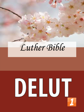 DELUT Cover