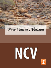 Ncv_medium