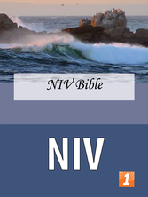 Niv_medium