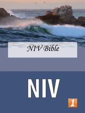 NIV Cover